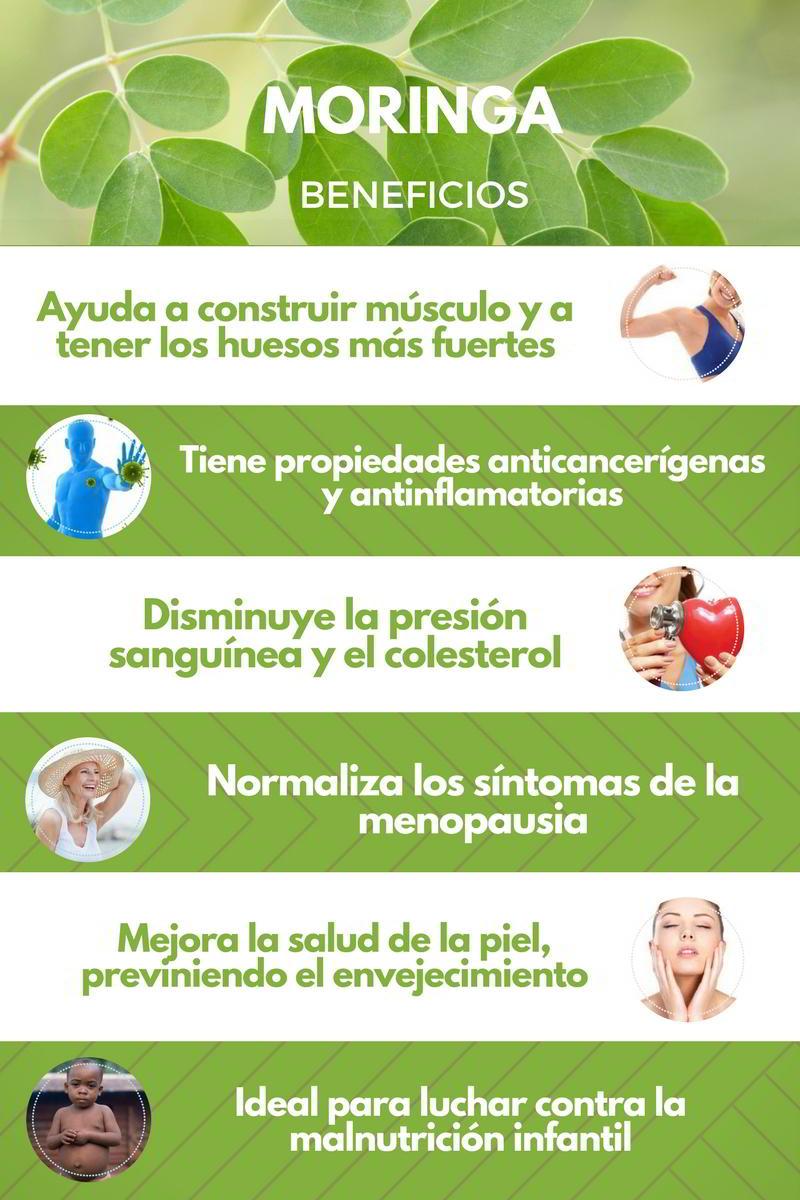 Propiedades curativas de la moringa oleifera